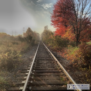 Looking Down the Old Railroad