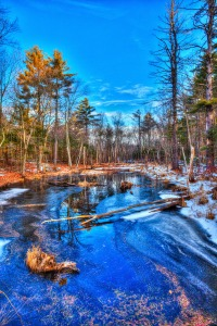 Boxborough-Pond_MG_5254_12x18