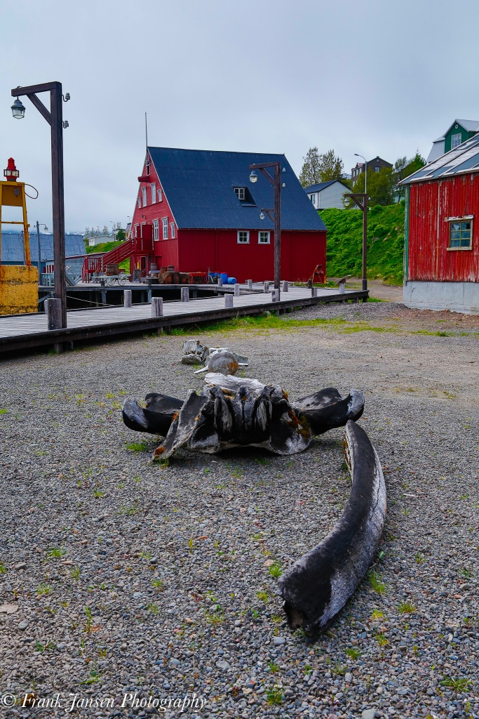 20150620-Iceland_57A2036