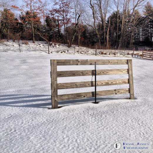 The Lone Fence