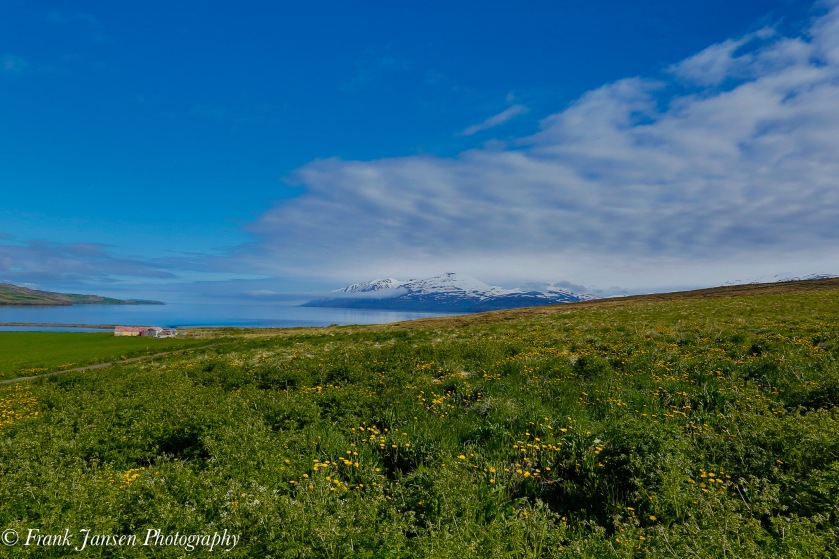 20150619-Iceland_57A1873