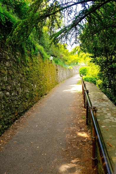 Beautiful Walks