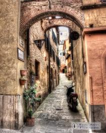 Alleys everywhere!