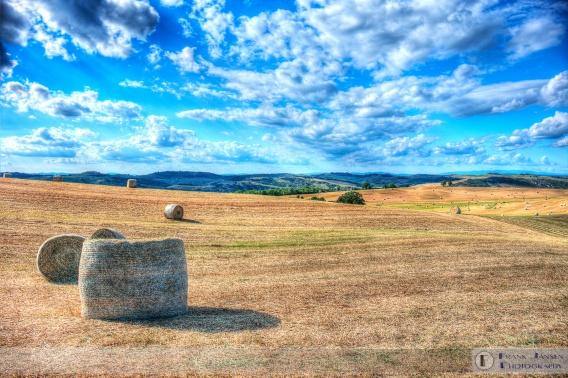 Fields of Tuscany