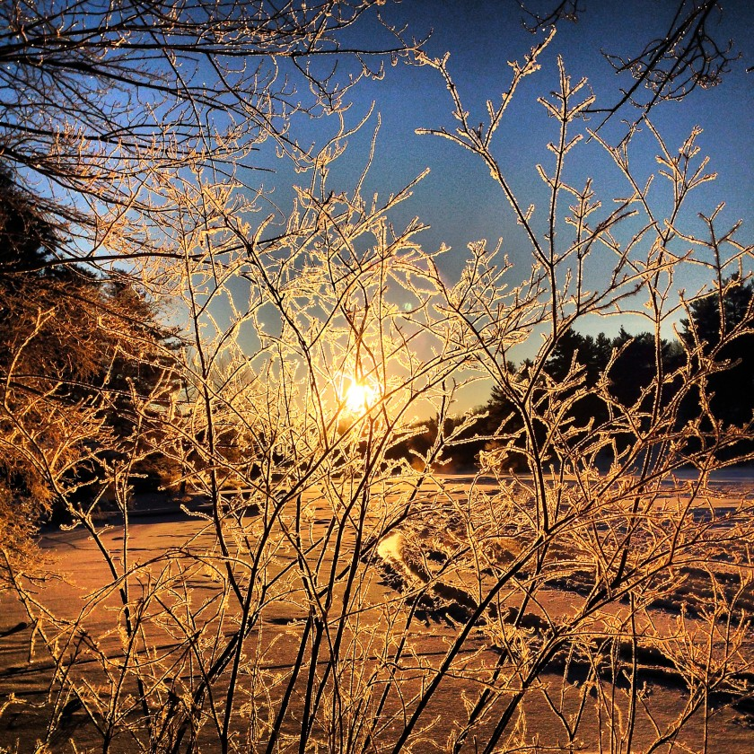 Winter-Revisited-IMG_3368
